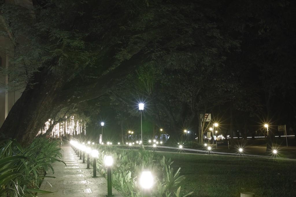Liliputian street lamps.